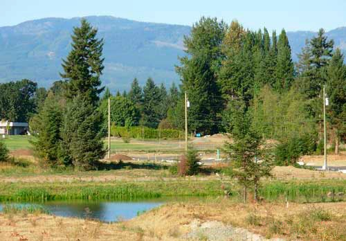Courtenay city lot for sale