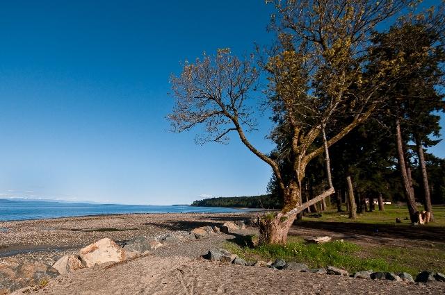 Qualicum Landing New Beachfront Homes on Vancouver Island