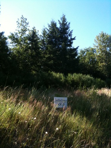 Large rural lots for sale in the Comox Valley