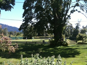Lawn Tennis Court at Cowichan Bay, Vancouver Island BC