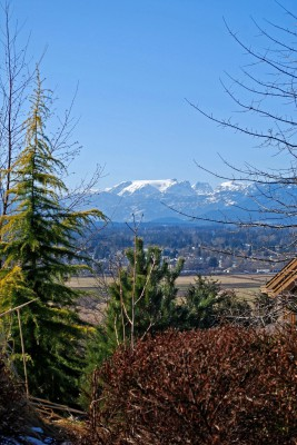 View lot Courtenay